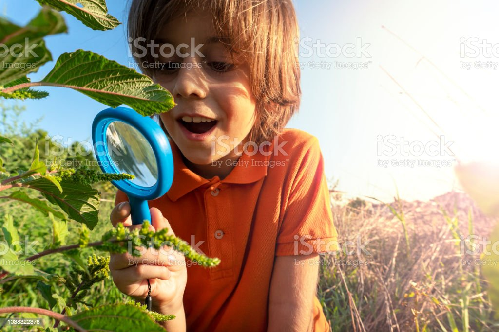Child doing research in nature.