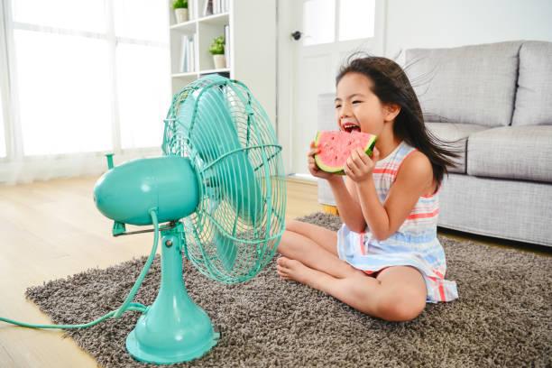 barn äter vattenmelon med två händer. - feber bildbanksfoton och bilder