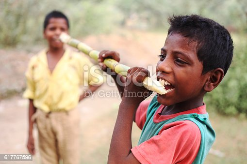 941788480 istock photo Child enjoying sugarcane 617767596