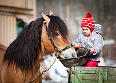 istock Child feeding a horse in winter 160538358