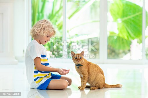istock Child feeding home cat. Kids and pets. 1076204006
