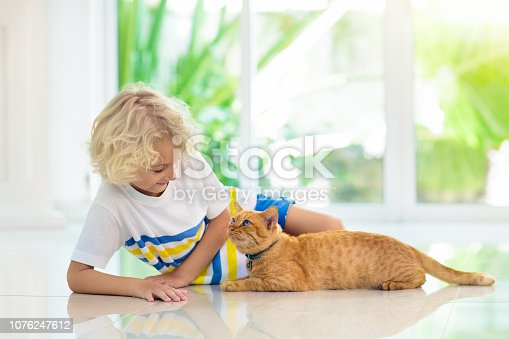 istock Child feeding home cat. Kids and pets. 1076247612