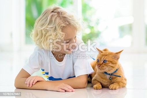 istock Child feeding home cat. Kids and pets. 1076247662