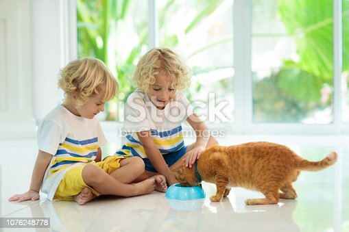 istock Child feeding home cat. Kids and pets. 1076248778