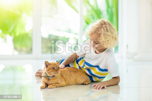 istock Child feeding home cat. Kids and pets. 1076249912