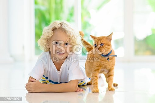istock Child feeding home cat. Kids and pets. 1076249972