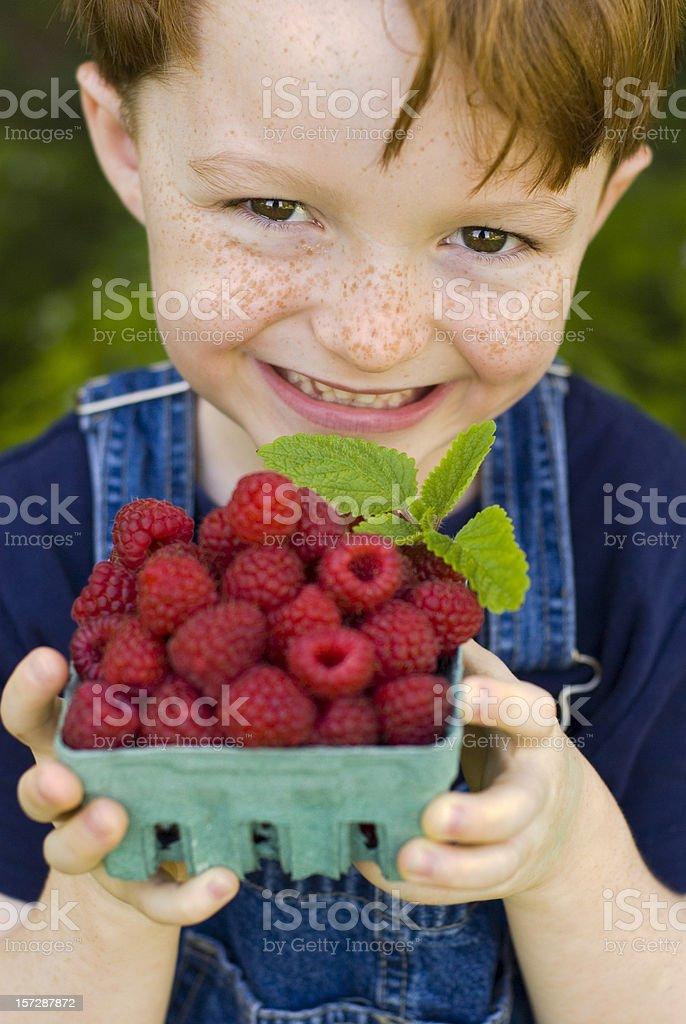 Child Food Gardener with Berries, Boy Holding Raspberry Fruit Basket royalty-free stock photo