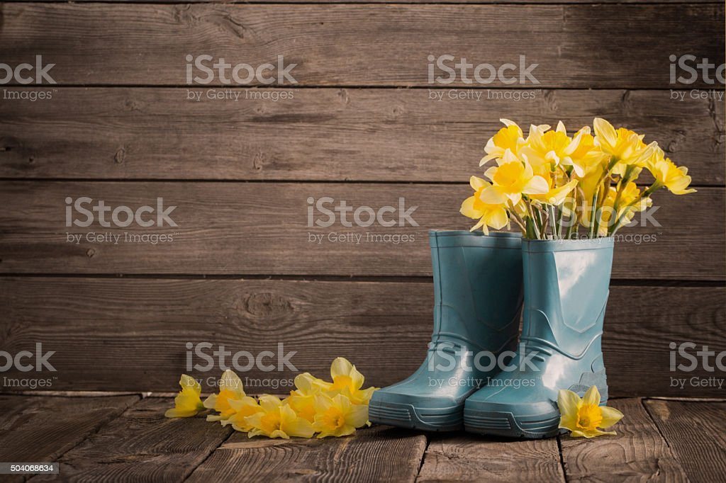 child garden shoes with spring flowers stock photo