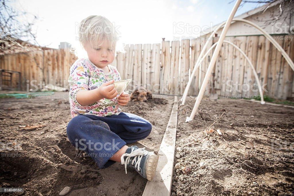 Child Gardening stock photo