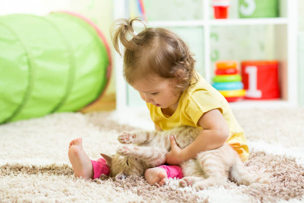 Child girl holding her cat kitten on the floor picture id638744538?b=1&k=6&m=638744538&s=612x612&w=0&h=b96b3tybamly 2cbknwbv96a1xifberne1tslfnbaui=
