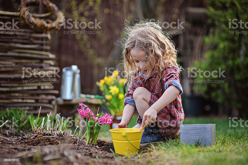 child girl planting flowers in spring garden stock photo