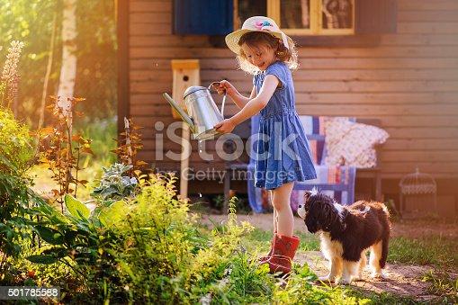 istock child girl watering flowers with her dog in summer garden 501785588