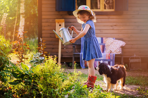 child girl watering flowers with her dog in summer garden
