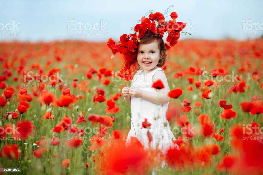 Child girl with bouquet of poppies - Royalty-free Agricultural Field Stock Photo