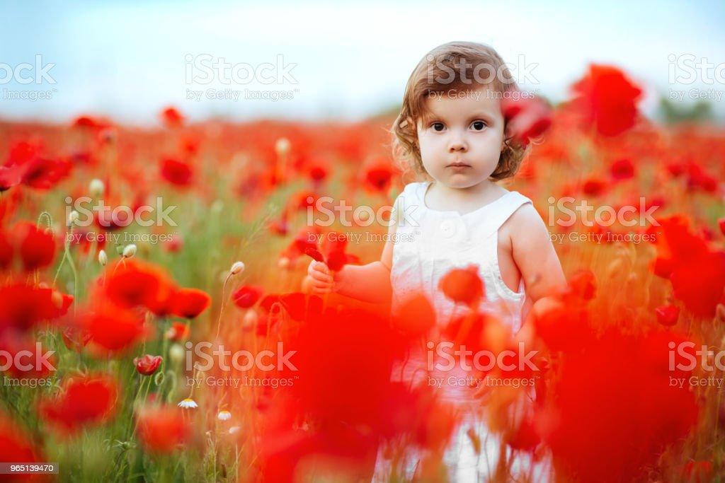 Child girl with bouquet of poppies zbiór zdjęć royalty-free