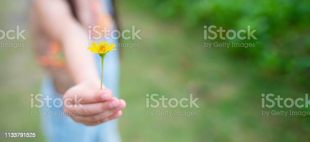 Photo of Child gives yellow flower