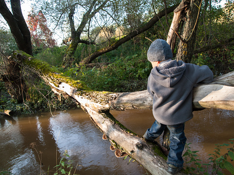 Child goes on a log