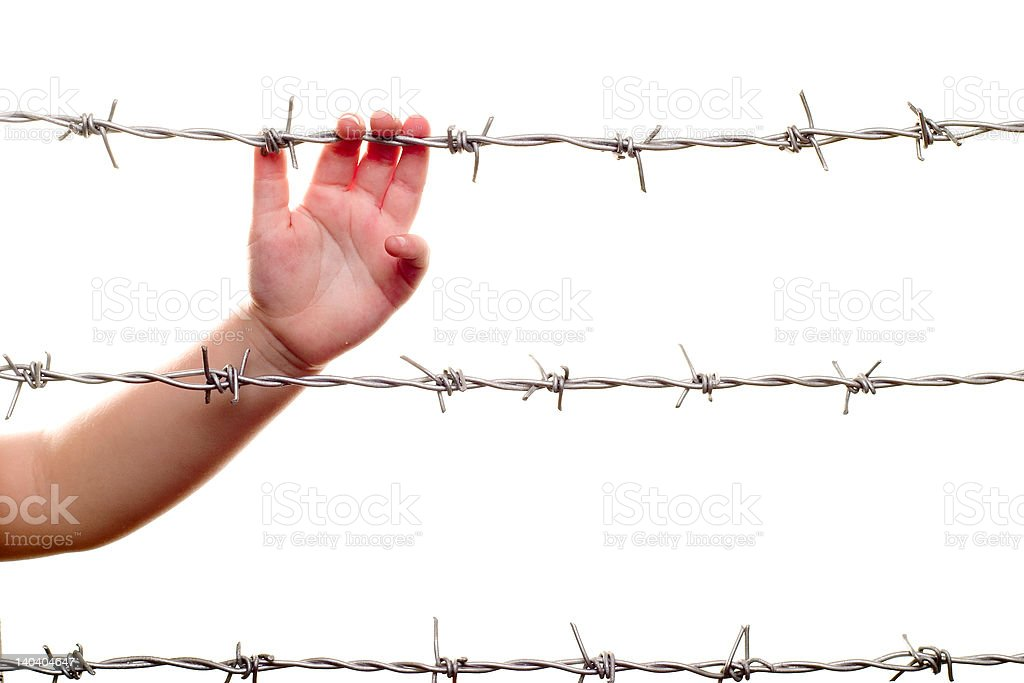 child hand & barbed wire royalty-free stock photo