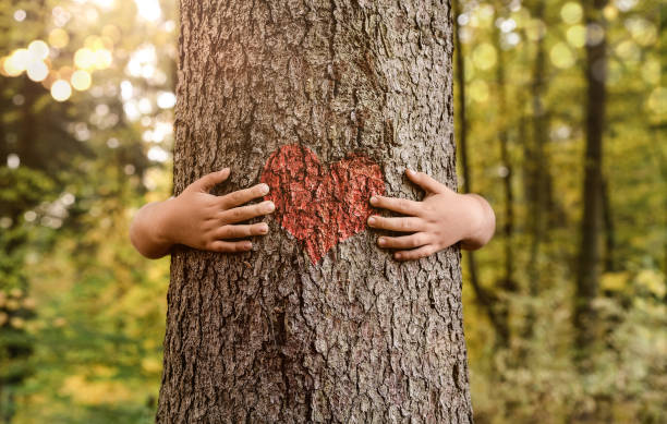 Child hands hugging tree Nature lover, close up of child hands hugging tree with copy space tree hugging stock pictures, royalty-free photos & images