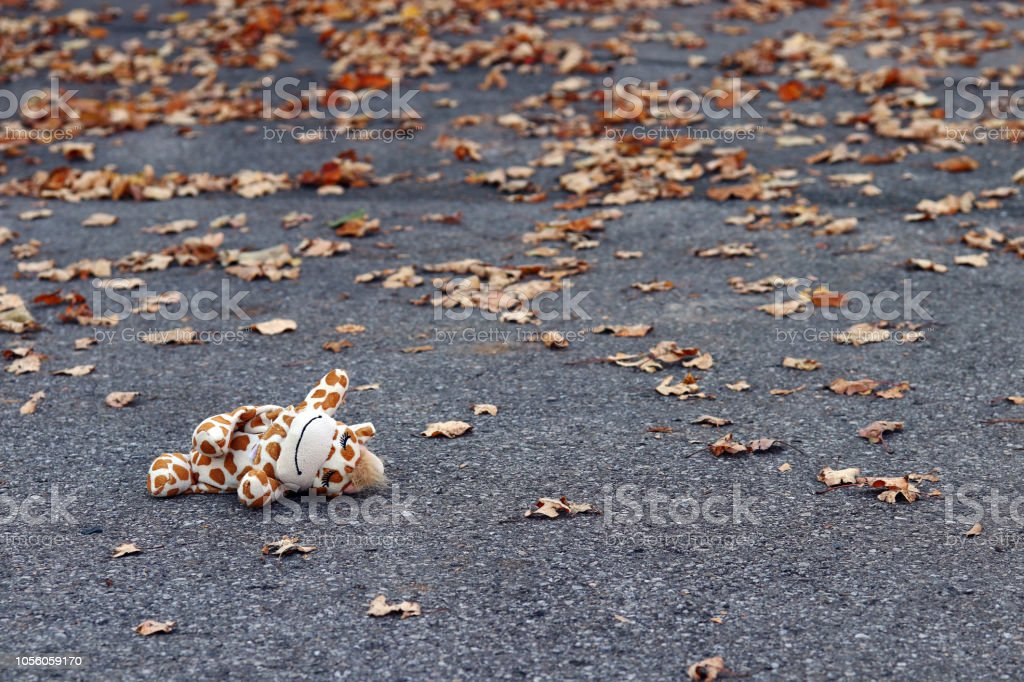 A child has lost a toy on the road. Accident with a child on the road stock photo