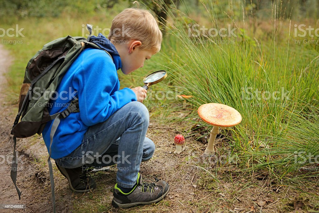 Child Holding Magnifying Glass Discovering Nature in The Forest stock photo