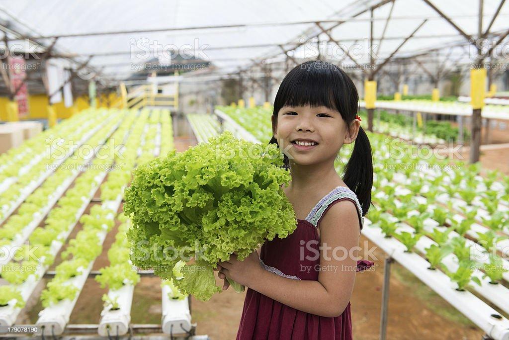 Child holding vegetable royalty-free stock photo