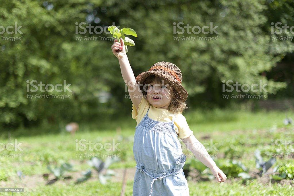Child holds up radishes royalty-free stock photo