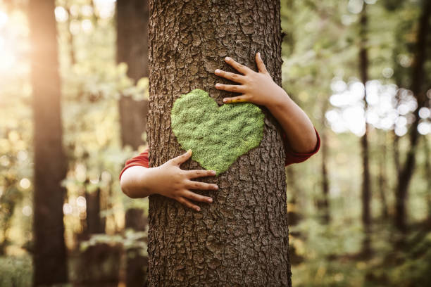 Child hugging tree with heart shape on it stock photo