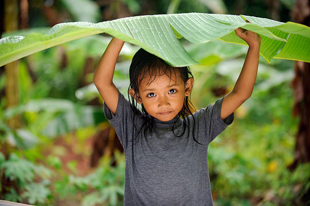 Child in a Rain Little girl hiding from rain under banana leaf indonesian ethnicity stock pictures, royalty-free photos & images