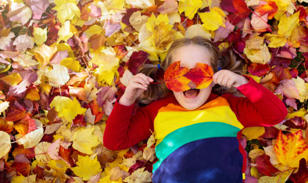 Child in fall park. Kid with autumn leaves. stock photo