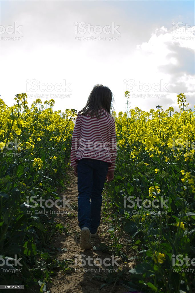 Child in field stock photo