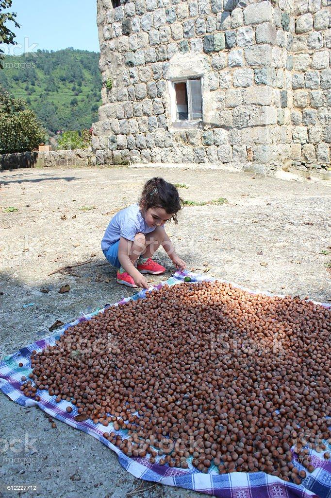 child in harvest stock photo