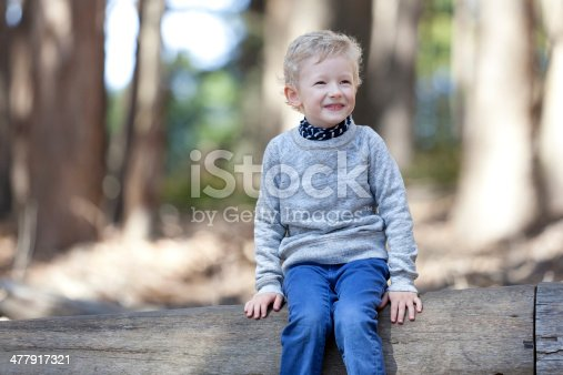 istock child in the woods 477917321