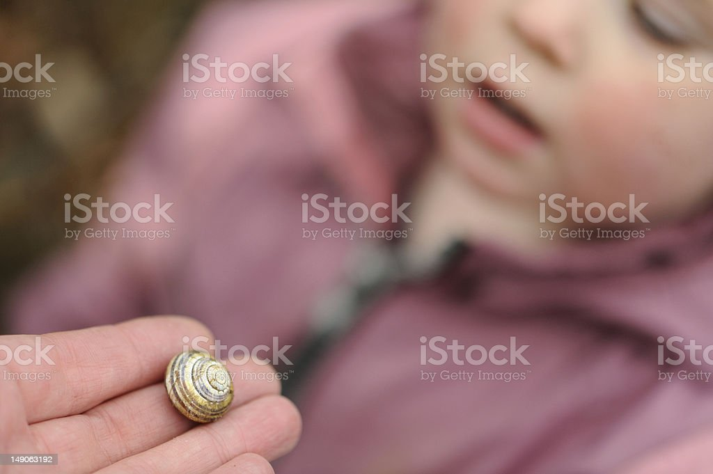 Child looks at snail stock photo