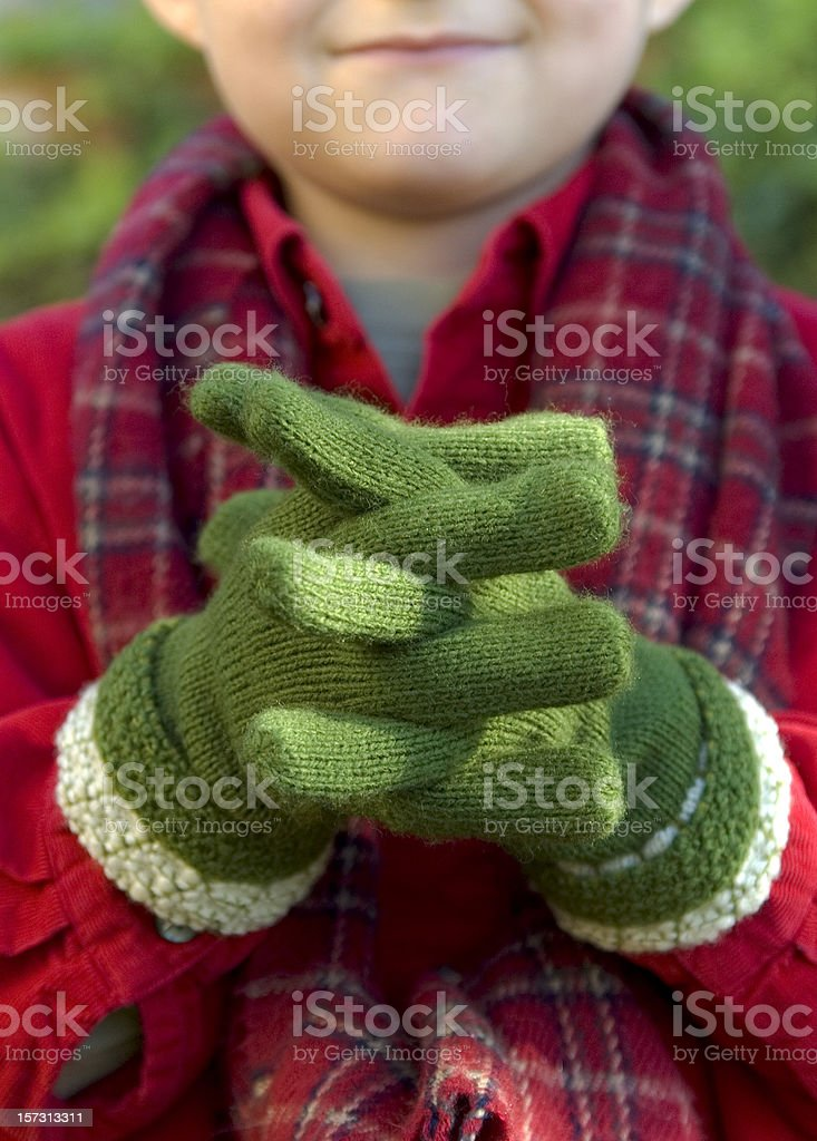 Child Mitten Hands, Boy Outdoors Bundled Up & Plaid Christmas Scarf royalty-free stock photo