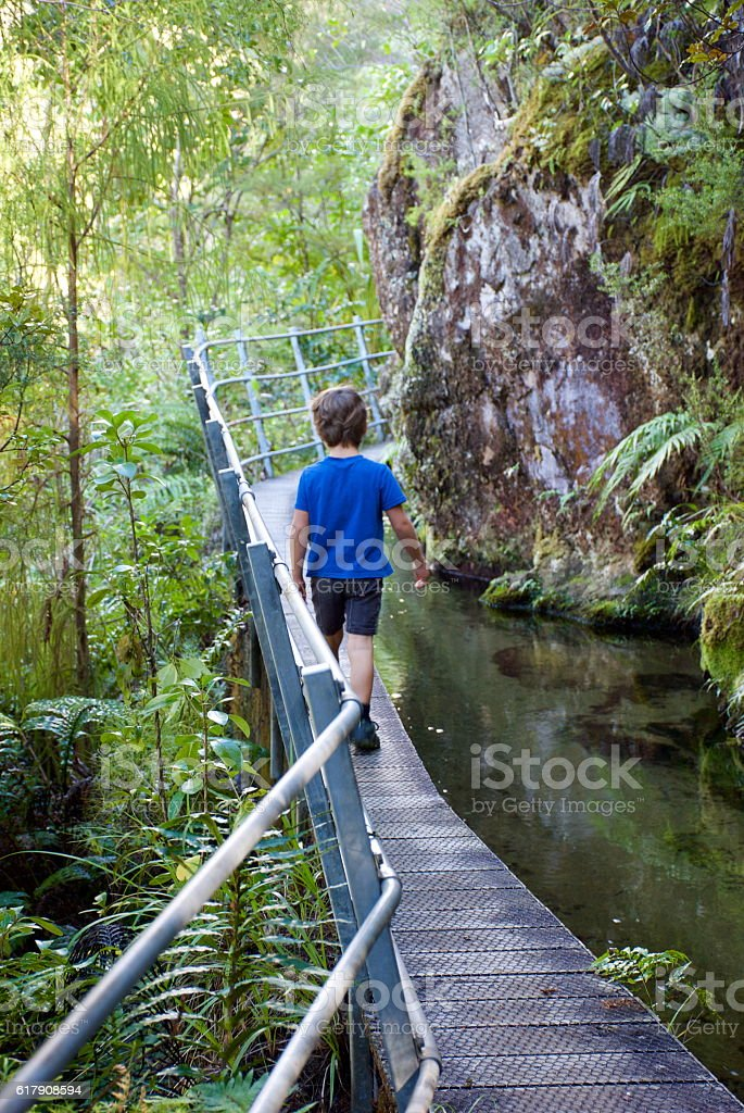 Child on Wooden Walkway stock photo