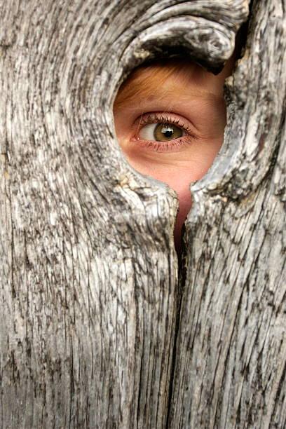 Child Peeking Through Knothole stock photo