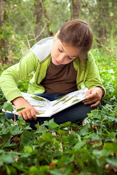 criança planta de colecção - folha de caderno imagens e fotografias de stock