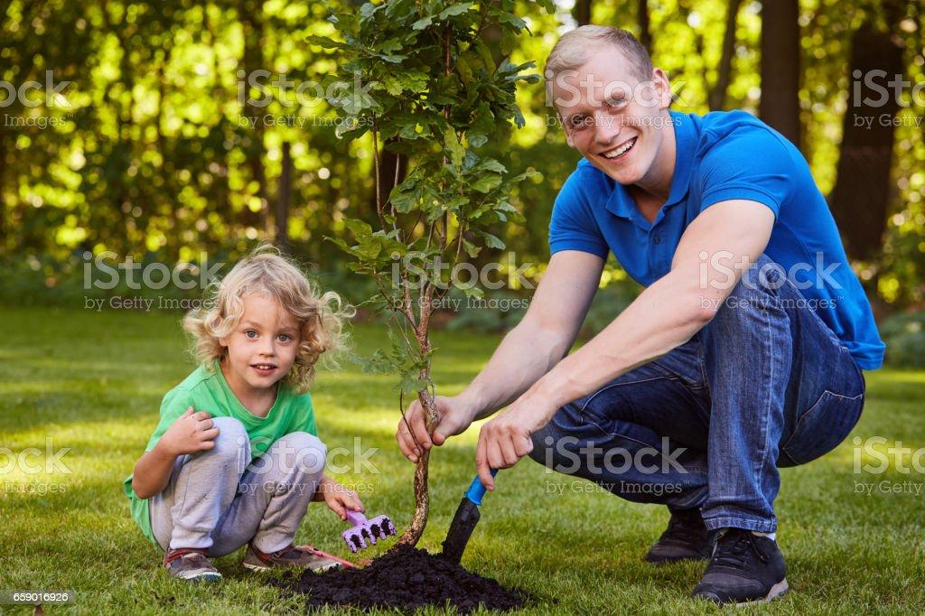 Child planting tree seedling royalty-free stock photo