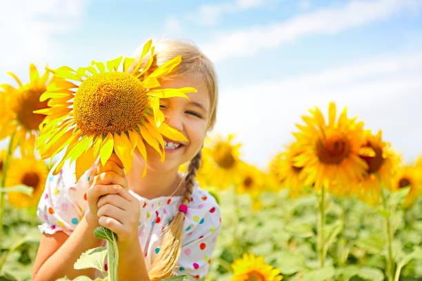 child playing in sunflower field on sunny summer day - sunflower стоковые фото и изображения