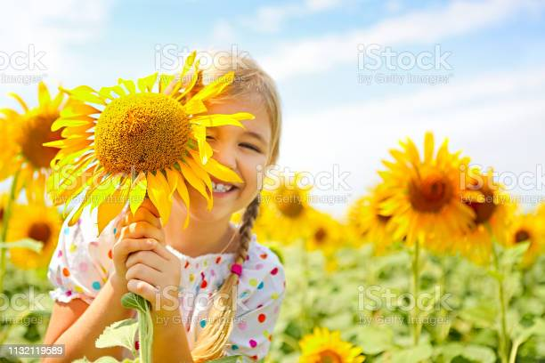 Photo of Child playing in sunflower field on sunny summer day
