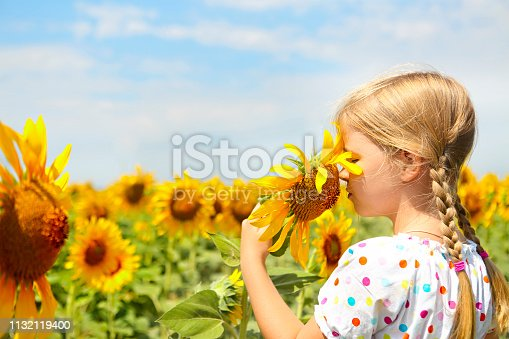 istock Child playing in sunflower field 1132119400