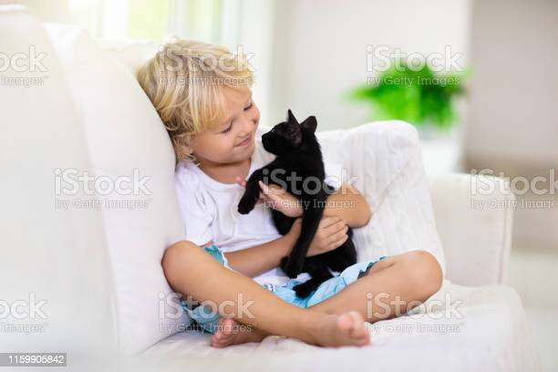 Child playing with baby cat kid and kitten picture id1159905842?b=1&k=6&m=1159905842&s=612x612&h=3vbxnkl5hkto rlyyhbx mmhxkamuwfro54rz4cft8w=