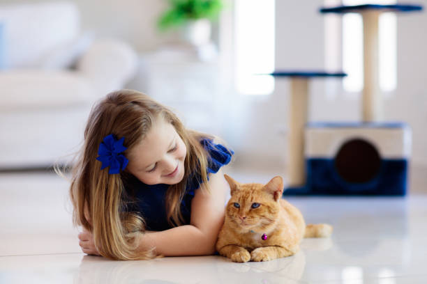 Child playing with cat at home kids and pets picture id1132614008?b=1&k=6&m=1132614008&s=612x612&w=0&h=5hltbbfts3dkcsz7fn4 bkoeq8 ekahq7r5m0lu1ozo=