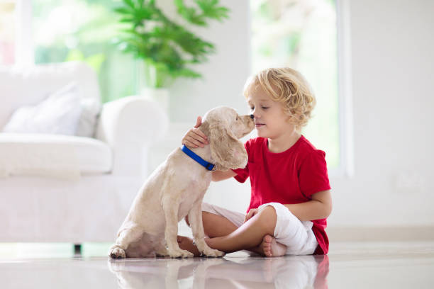 Child playing with dog kids play with puppy picture id1168451124?b=1&k=6&m=1168451124&s=612x612&w=0&h=4a2f6owvigm66detmmbbr2qmkszo95fzrj3mmbpdava=