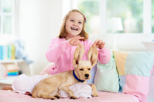 Child playing with dog kids play with puppy picture id1171736667?b=1&k=6&m=1171736667&s=612x612&w=0&h=x6u9mxh3mjn2izsm76g 7cq4kucwxehrc qayphjoz0=