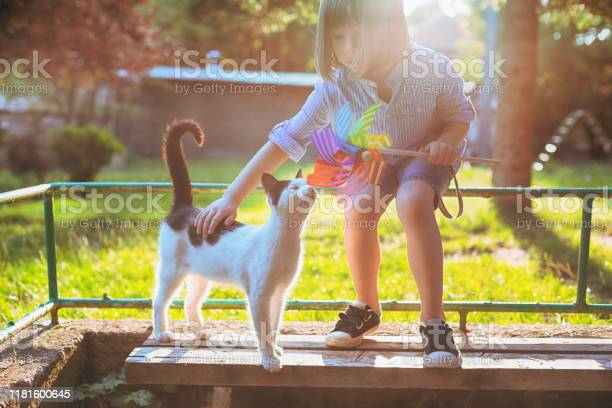 Child playing with stray cat picture id1181600645?b=1&k=6&m=1181600645&s=612x612&h=9fd3vvhqkdgeft n0d7pemdwyfcozwpoxzt0ewlwecw=
