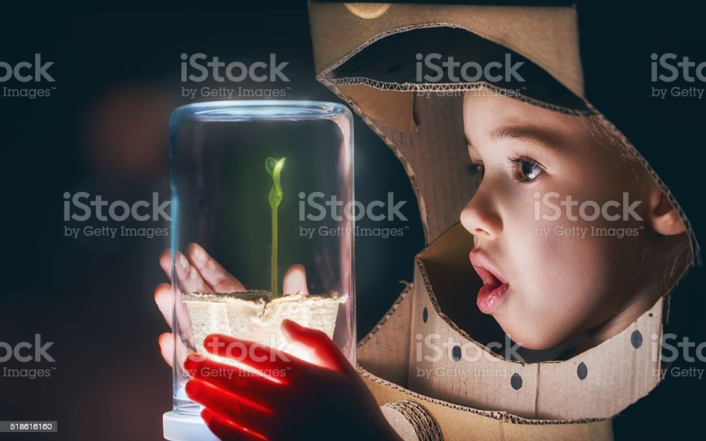Child sees a sprout stock photo