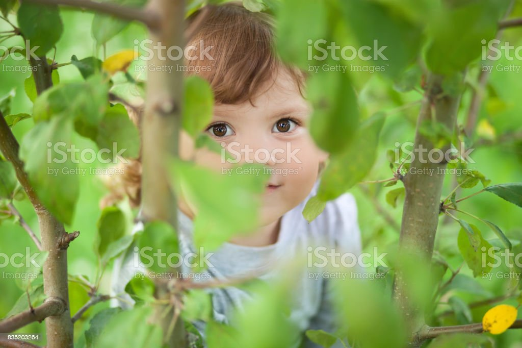Child sitting on a tree and hiding royalty-free stock photo