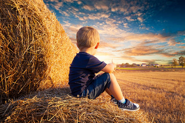 Child sitting on bales of straw - foto de stock